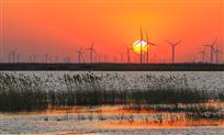 日出黄河口