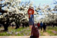 又是一年梨花季