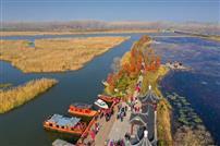 秋色黄河湾