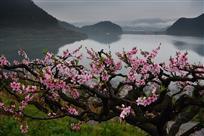 亭下湖的春天,