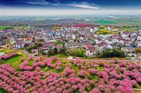 美丽乡村在和凤