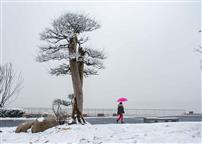 湖海塘雪景