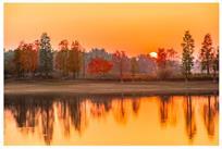 夕阳下的秋景