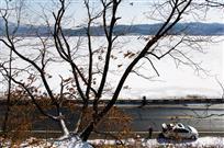 明月湖冬色
