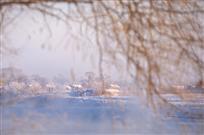乡村雪色望无垠