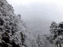 北路的雪01