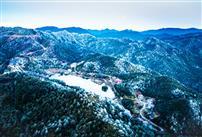 雪韵梅花山