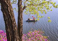 春天来到松花湖