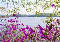 松花湖之春