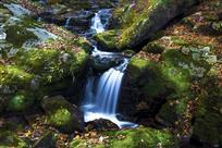 飞瀑绿水间