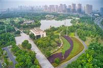 九里河湿地公园