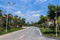 湖畔槐园干净的道路