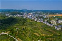 《俯瞰菖蒲塘村》