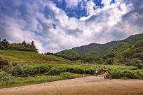 骑行在绿水青山间(对河口)